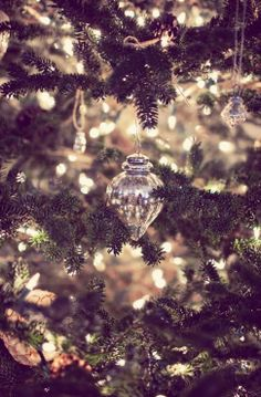 Holiday Sparkle!