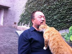 """Ai Weiwei with his cat he lovingly calls """"The Chinese State""""."""