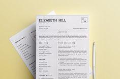 Professional Resume/CV Template - 5