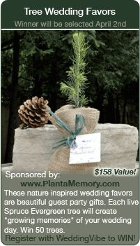 Wedding Contests - Win this wedding tree favor giveaway.