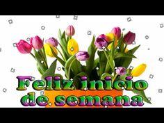 feliz inicio de semana #felizlunes a todo el grupo