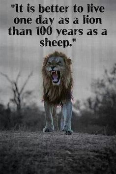 Don't be a sheep.