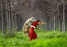 dance with wolf