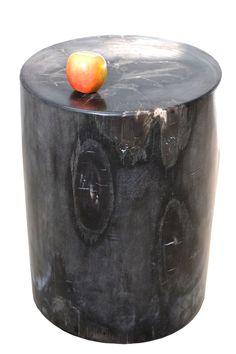DAO (Design Around Objects)- Petrified Wood