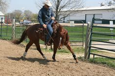 From Sour To Sweet - Fixing The Barn, Gate, Or Buddy Sour Horse
