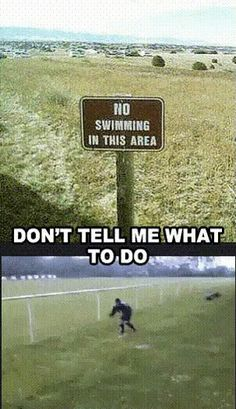Funny Jokes, Pictures & Videos: Off Beat Humor - No Swimming! Don't tell me what. - So Funny Epic Fails Pictures