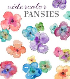 Watercolor Pansies - Clip Art.