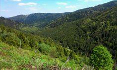Levočské vrchy Vineyard, River, Mountains, Nature, Outdoor, Outdoors, Naturaleza, Vine Yard, Vineyard Vines