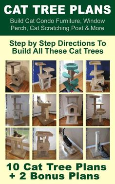 Cat Tree Plans: Build Cat Condo Furniture, Window Perch, Cat Scratching Post & More - Kindle edition by Brian Johnson. Crafts, Hobbies & Home Kindle eBooks @ Amazon.com.