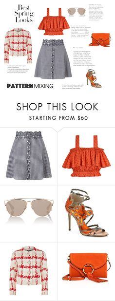 """""""#Patternmixing"""" by foxxyslang ❤ liked on Polyvore featuring Miss Selfridge, Samantha Pleet, Christian Dior, Jimmy Choo, Alexander McQueen, Tory Burch and H&M"""