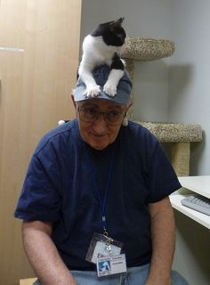 cat ON the hat