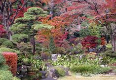 Image detail for -Famous Gardens Other Regions | Real Japanese Gardens