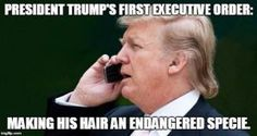 Funny Donald Trump Images to Make You Laugh and Cry: Trump's First Executive Order