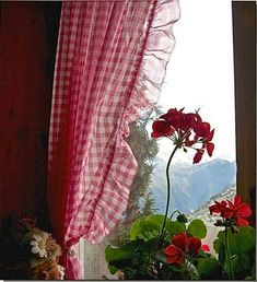 red and white gingham checked curtains for kitchen. and maybe windows in living room tie with white lace Cottage Living, Cottage Style, Farm Cottage, Red Geraniums, Looking Out The Window, White Cottage, French Cottage, Window View, Window Ledge