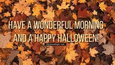 Have a wonderful morning and a happy Halloween!