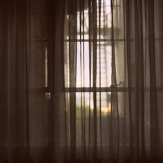 Window and Curtains Photo