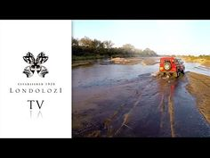Africa Electric Car: A Love Affair with Land Rover - Londolozi TV