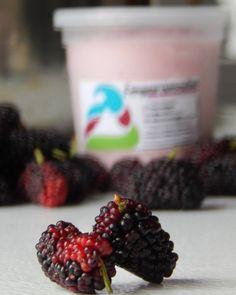 """Bien naturalito y bien andino!! Así es nuestro helado de """"Yogurt con Mora"""" #heladosemparamados"""
