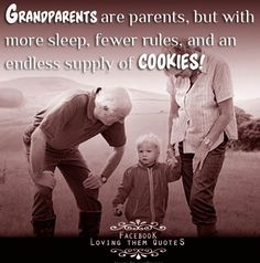 Wish my grandparents could see my grandchildren! Foster Grandparents, Grandma Quotes, Grandma And Grandpa, Baby Supplies, Grandchildren, Grandkids, Family Quotes, Getting Old, Wise Words