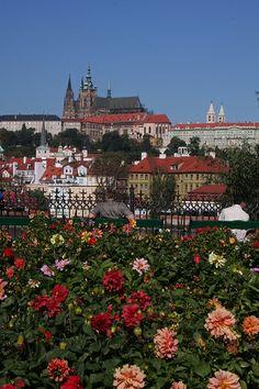 Prague Castle, Czech Republic by Alan Shipley Beautiful Castles, Beautiful Buildings, Beautiful Homes, Beautiful Places In The World, Beautiful Places To Visit, Budapest, Prague Czech Republic, Famous Castles, Prague Castle