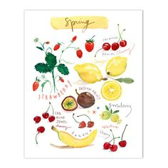 """Spring fruits - In english Archival giclee reproduction print from my watercolor illustration. Printed on fine art """" BFK Rives """" hot-pressed paper, smooth surface, 140 lb, cot Watercolor Fruit, Fruit Painting, Watercolor Paintings, Watercolour, L'art Du Fruit, Four Seasons Art, Pinterest Instagram, Vegetable Prints, Colorful Wall Art"""