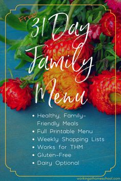 Printable menu for Trim Healthy Mama with shopping lists - these dinners are so good! Works for THM, dairy-free, and gluten-free diets, too!