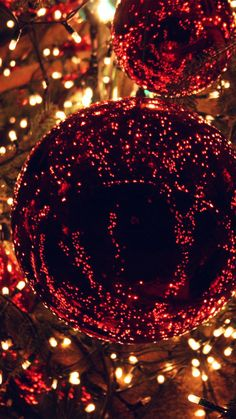 CHRISTMAS LIGHT BALLS HOLIDAY LIFE CITY WALLPAPER HD IPHONE