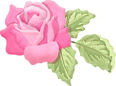 Romance Roses Collection