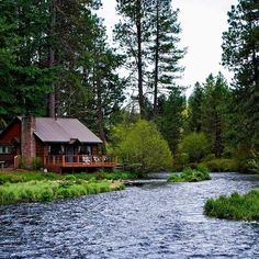 Lake Cabins, Cabins And Cottages, Mountain Cabins, Tiny Build, Little Cabin, Log Cabin Homes, Cozy Cabin, Cabins In The Woods, My Dream Home
