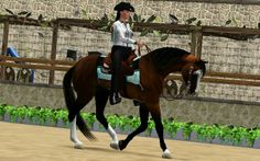 Sims 3 Horses for Sale | ISRC - Reining Championship 2013 [RESULTS p.1]