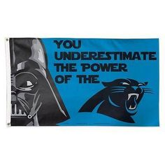 CAROLINA PANTHERS WARS YOU UNDERESTIMATE THE POWER OF 3'X5' DELUXE FLAG