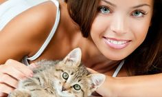 Best Tips to keep Your Cat Happy &amp Healthy During #Summer