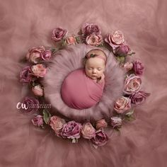 Pink roses digital background for newborn photography – Pink roses digital background for newborn photography – Foto Newborn, Newborn Baby Photos, Baby Poses, Baby Girl Photos, Newborn Shoot, Cute Baby Pictures, Newborn Pictures, Baby Girl Newborn, Newborn Photo Props