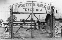 7 August 1944 | 305 prisoners began work in the newly created sub-camp in Trzebinia located near the oil refinery Erdöl Raffinerie Trzebinia O/S. They began clearing rubble and repairing the damage after a heavy bombing attack.  The sub-camp replaced a camp for about 200 British POWs who had just been sent to Lamsdorf POW camp. 300 prisoners were placed in the barracks they left behind then another 300 two weeks later and a further 200 in mid-September.  There were a total of six barracks in…