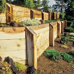 a timber retaining wall - need alternative to pressure treated wood, though - Gardening Now Wooden Retaining Wall, Backyard Retaining Walls, Building A Retaining Wall, Backyard Landscaping, Gabion Wall, Fence Design, Garden Design, Wall Design, Design Design