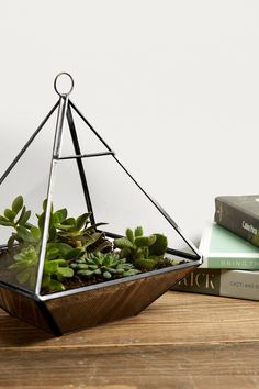 Shop Geo Pyramid Terrarium at Urban Outfitters today. We carry all the latest styles, colours and brands for you to choose from right here.