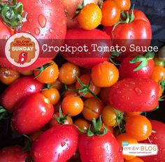 Make fresh homemade Crockpot Tomato Sauce with your bounty of garden fresh tomatoes to last you months by freezing for soups and sauces. Crock Pot Slow Cooker, Crock Pot Cooking, Slow Cooker Recipes, Crockpot Recipes, Fun Recipes, Mayonnaise, Ketchup, Tomato Sauce Crockpot, Sauces
