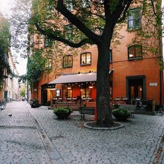 Brända tomten, easily one of the cutest squares in Stockholm! Have a fika or food at Under Kastanjen and enjoy the atmosphere of Gamla Stan. Stockholm Travel, Visit Stockholm, Stockholm City, Stockholm Sweden, City Landscape, Landscape Photos, Fresco, Roads And Streets, Houses In France