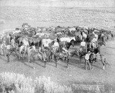 Old West Cowboys And Indians | The old west...Cowboys, Indians and Horses and such... / Cowboys