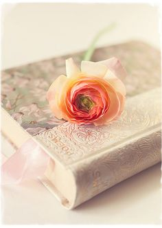 Poems and roses