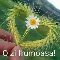 Heart In Nature, Afrikaans Quotes, Special Quotes, Heart And Mind, Amazing Nature, Good Morning, Mandala, Marriage, Herbs