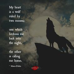 My heart is a wolf ruled by two moons one which beckons me back into the night, the other is calling me home.