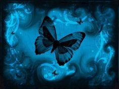 _butterfly_+background_90001.jpg (587×440)