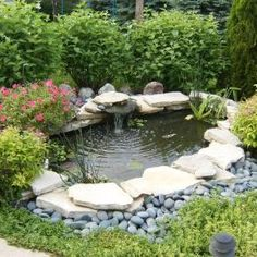 Small ponds like this one, can add beauty, and attract beneficial birds, butterflies, and frog.