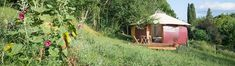 Destinations, Gazebo, Shed, Outdoor Structures, Cabin, House Styles, Home Decor, Tourism, Places