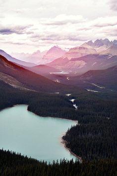 schöne Berglandschaft mit Wald