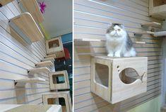 Catswall Design Modular Cat Climbing Wall
