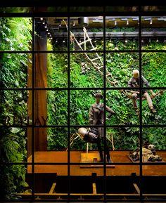 I want a vertical garden inside my home!