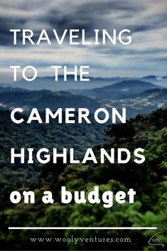 Cameron Highlands is one of the most beautiful regions in Malaysia. Find out how to get there, where to stay, and what to eat, all without breaking the bank!