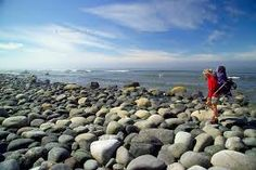 Nootka island Gold River, Community, Island, Water, Outdoor, Gripe Water, Outdoors, Islands, Outdoor Games